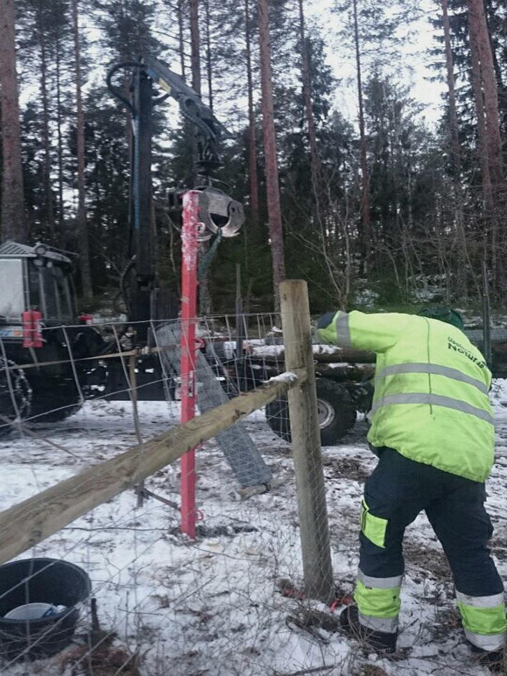 Vi monterar stängsel och stolpar för staket